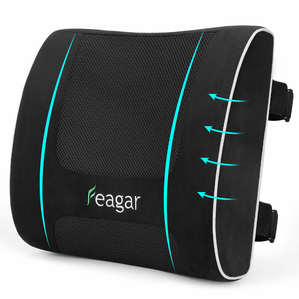 Lumbar Pillows Feagar Memory Foam